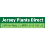 Ranunculus Rococo Collection – Double Up and Save  Jersey Plants Direct